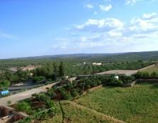Das grüne Kloster Mor Gabriel