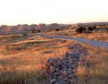 Kafro in der Abendsonne